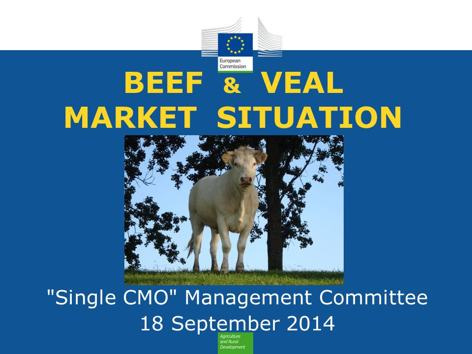 BEEF & VEAL MARKET SITUATION Single CMO Management Committee 18 September 2014
