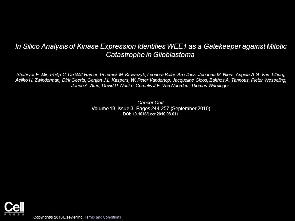 In Silico Analysis of Kinase Expression Identifies WEE1 as a Gatekeeper against Mitotic Catastrophe in Glioblastoma Shahryar E.