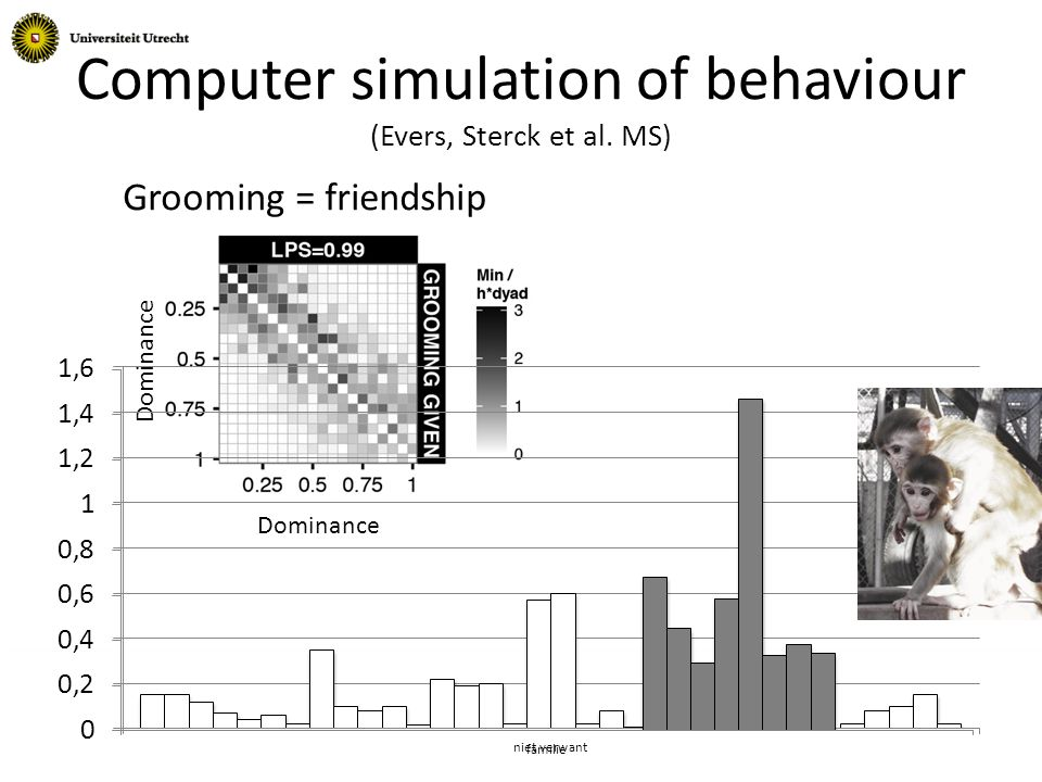 Computer simulation of behaviour (Evers, Sterck et al. MS) Grooming = friendship Dominance