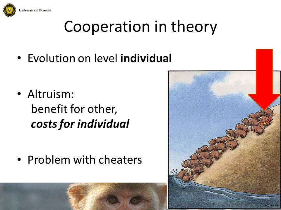 Relationships in group (Massen, Sterck & de Vos 2010) Kin Dominance Friendship 1 2 3 4 5 6 7 8 9 10 11 12 13 14 15 16 17 18 19 20 21 22 23 24 25 26 27 28 30 31 32 33 34 35 Sitting together 29 20 Timon (20) Bob (29)