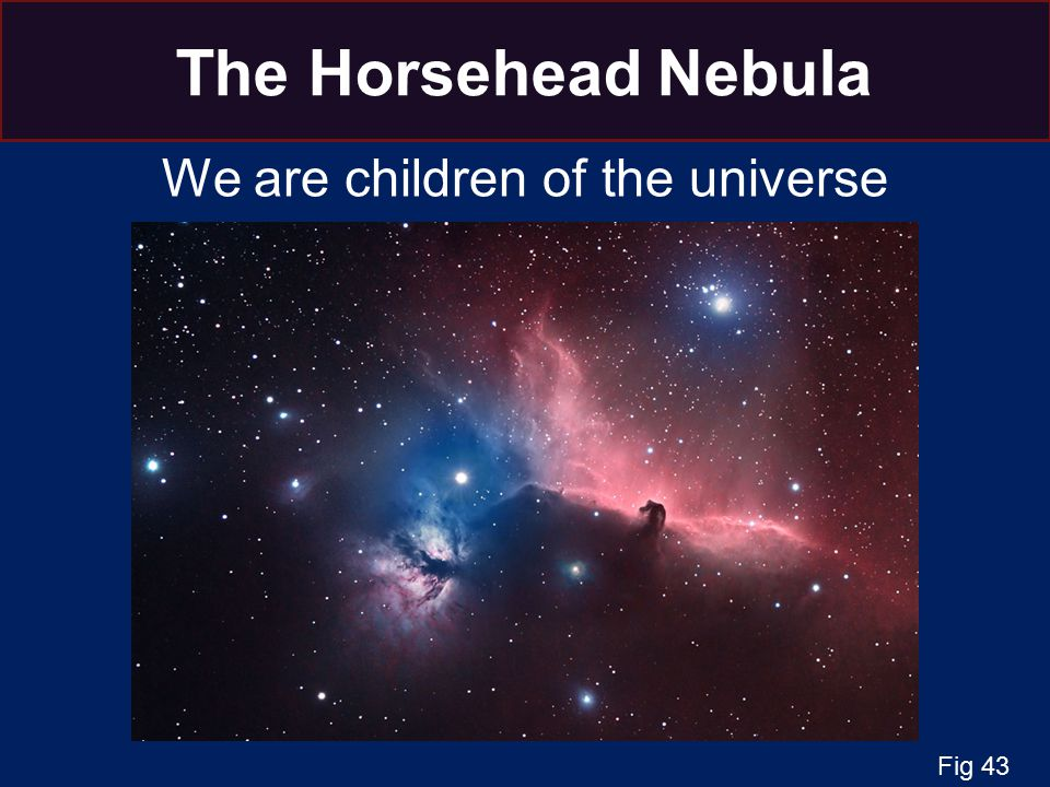 The Horsehead Nebula We are children of the universe Fig 43