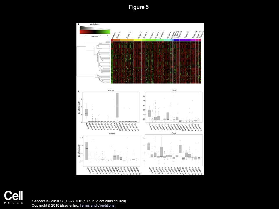 Figure 5 Cancer Cell 2010 17, 13-27DOI: (10.1016/j.ccr.2009.11.020) Copyright © 2010 Elsevier Inc. Terms and Conditions Terms and Conditions