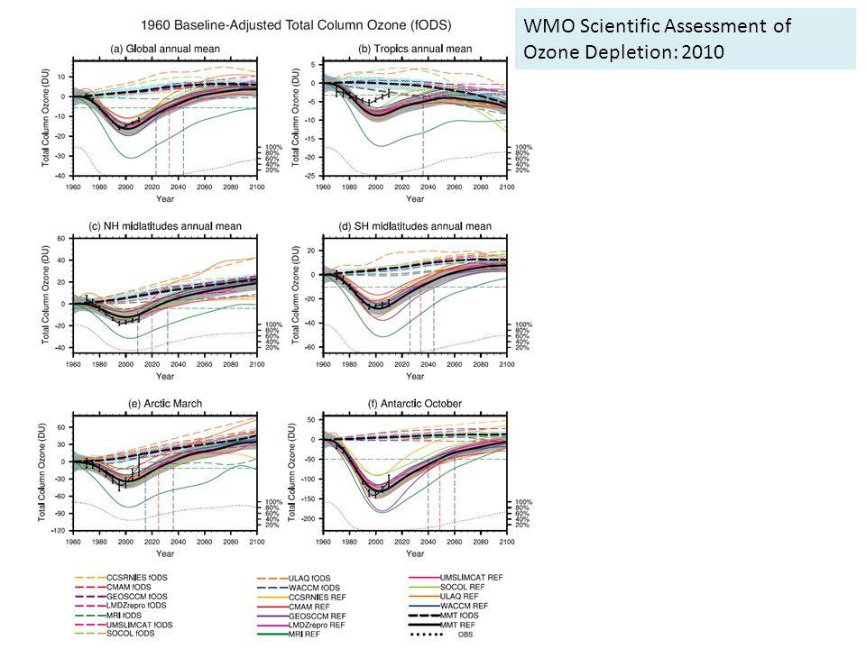 M. De Mazière, Senate Space Working Group WMO Scientific Assessment of Ozone Depletion: 2010