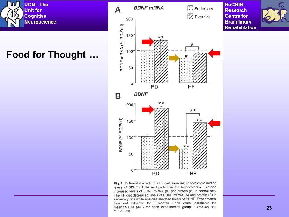 UCN - The Unit for Cognitive Neuroscience ReCBIR – Research Centre for Brain Injury Rehabilitation 23 Food for Thought …