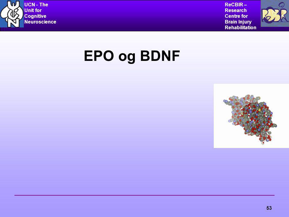 UCN - The Unit for Cognitive Neuroscience ReCBIR – Research Centre for Brain Injury Rehabilitation 53 EPO og BDNF