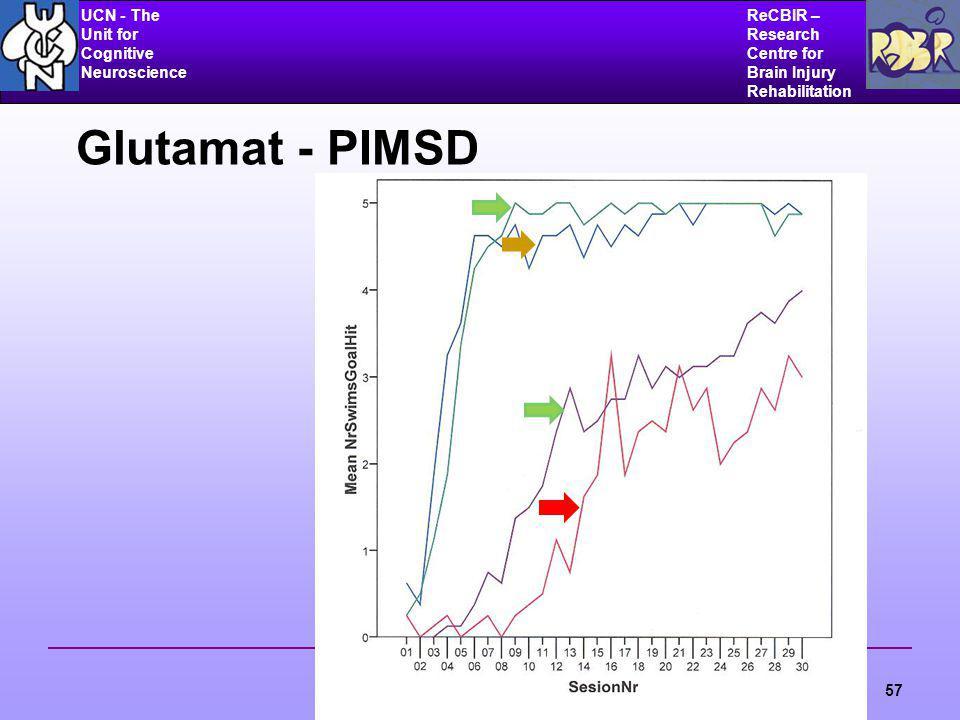 UCN - The Unit for Cognitive Neuroscience ReCBIR – Research Centre for Brain Injury Rehabilitation 57 Glutamat - PIMSD