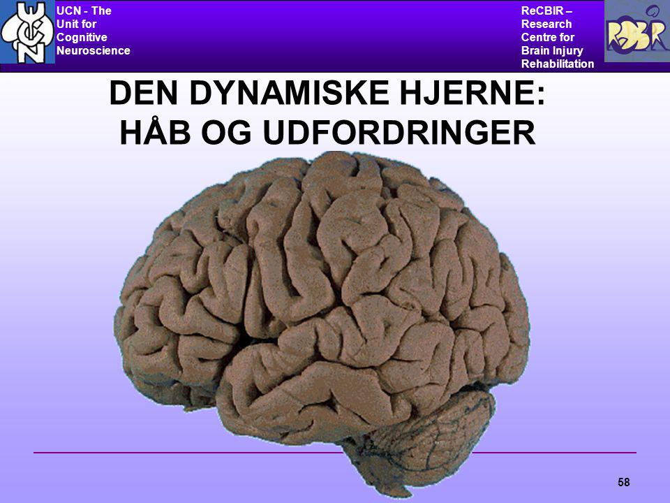 UCN - The Unit for Cognitive Neuroscience ReCBIR – Research Centre for Brain Injury Rehabilitation 58 DEN DYNAMISKE HJERNE: HÅB OG UDFORDRINGER