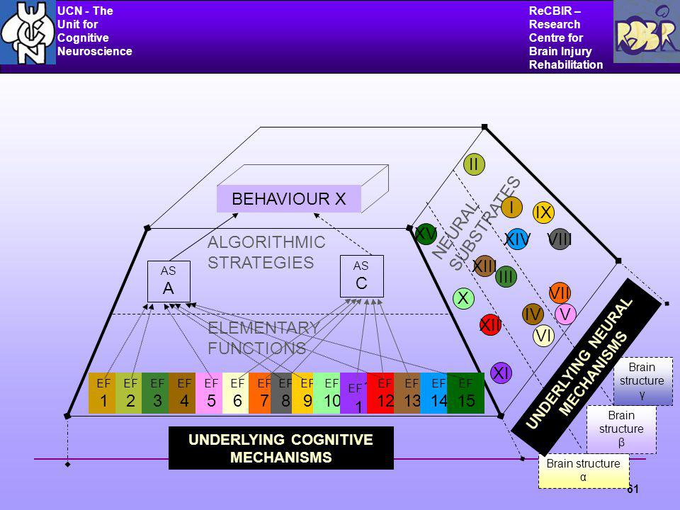 UCN - The Unit for Cognitive Neuroscience ReCBIR – Research Centre for Brain Injury Rehabilitation 61 ALGORITHMIC STRATEGIES ELEMENTARY FUNCTIONS NEURAL SUBSTRATES BEHAVIOUR X UNDERLYING COGNITIVE MECHANISMS AS A AS C EF 1 EF 2 EF 3 EF 4 EF 5 EF 6 EF 7 EF 8 EF 9 EF 10 EF 1 1 EF 12 EF 13 EF 14 EF 15 I II III IVV VI VII VIII IX X XI XII XIII XIV XV Brain structure α Brain structure β Brain structure γ UNDERLYING NEURAL MECHANISMS
