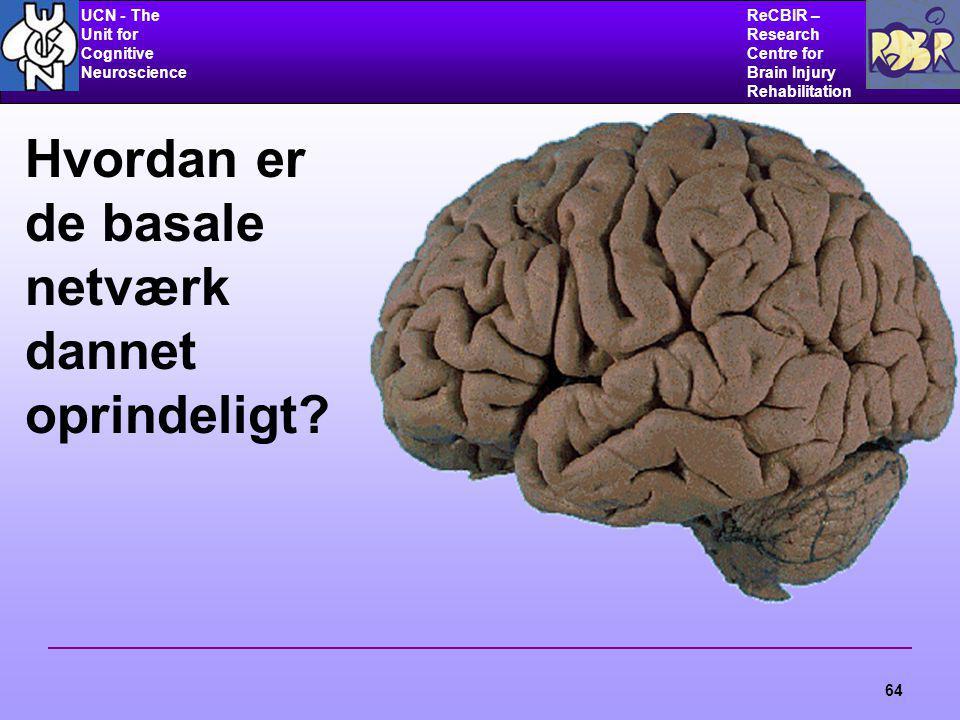 UCN - The Unit for Cognitive Neuroscience ReCBIR – Research Centre for Brain Injury Rehabilitation 64 Hvordan er de basale netværk dannet oprindeligt?