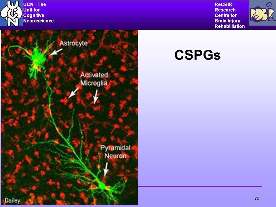 UCN - The Unit for Cognitive Neuroscience ReCBIR – Research Centre for Brain Injury Rehabilitation 73 CSPGs