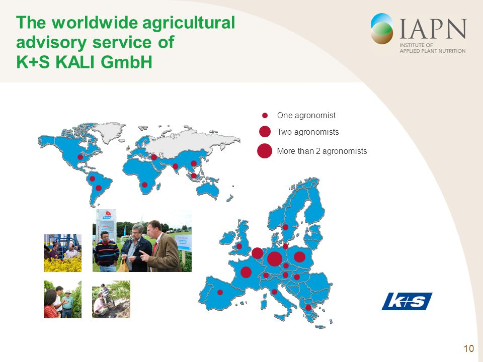 10 The worldwide agricultural advisory service of K+S KALI GmbH One agronomist Two agronomists More than 2 agronomists
