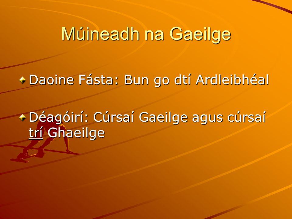 Múineadh na Gaeilge Daoine Fásta: Bun go dtí Ardleibhéal Déagóirí: Cúrsaí Gaeilge agus cúrsaí trí Ghaeilge
