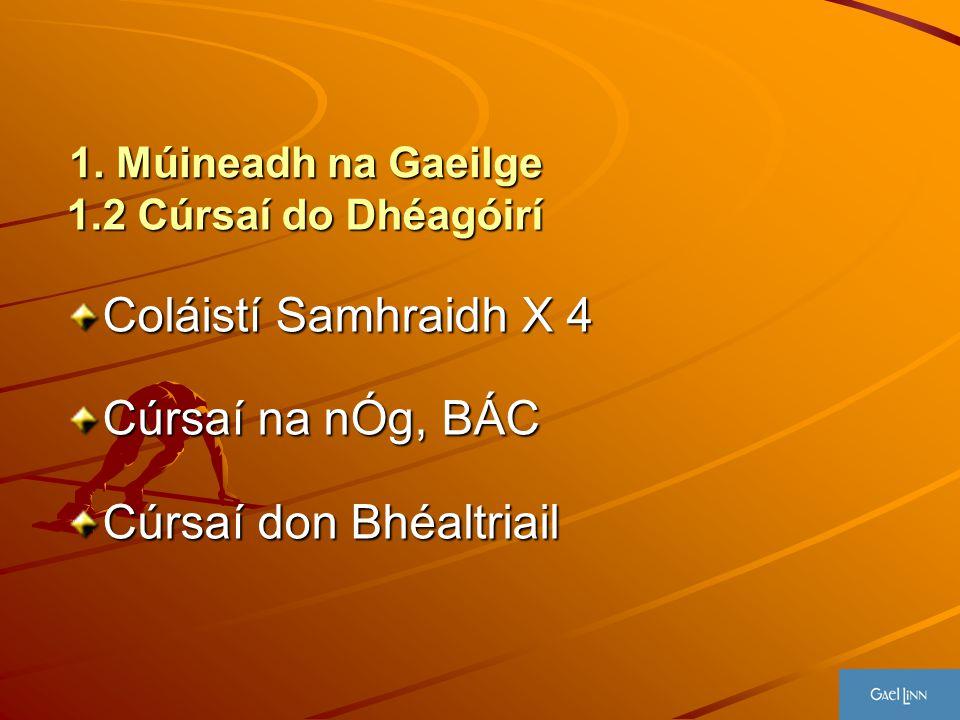 1. Múineadh na Gaeilge 1.2 Cúrsaí do Dhéagóirí Coláistí Samhraidh X 4 Cúrsaí na nÓg, BÁC Cúrsaí don Bhéaltriail