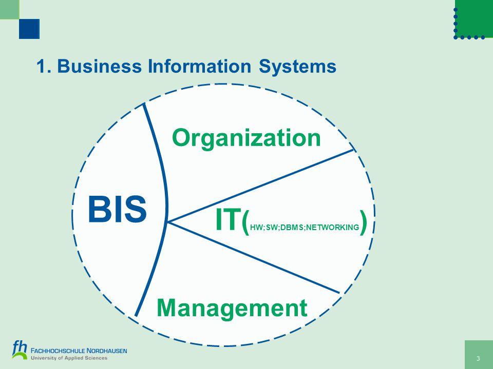 3 1. Business Information Systems Organization IT ( HW;SW;DBMS;NETWORKING ) Management BIS