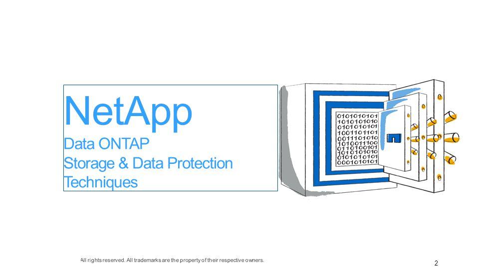 2 NetApp Data ONTAP Storage & Data Protection Techniques