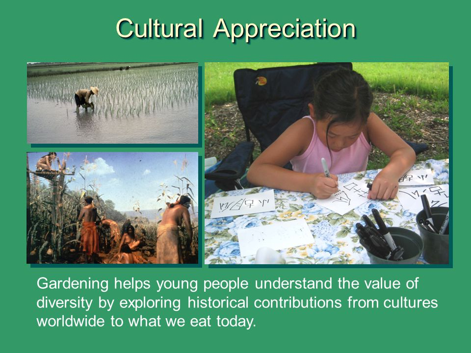 Cultural Appreciation Gardening helps young people understand the value of diversity by exploring historical contributions from cultures worldwide to