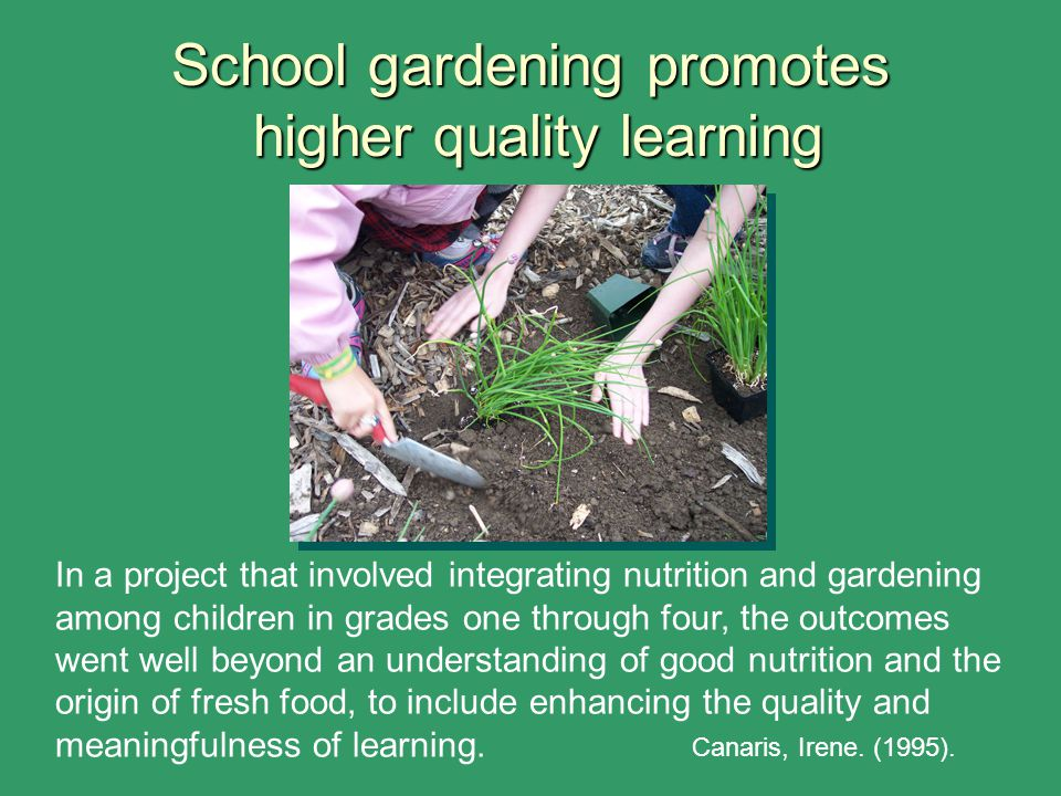 School gardening promotes higher quality learning In a project that involved integrating nutrition and gardening among children in grades one through