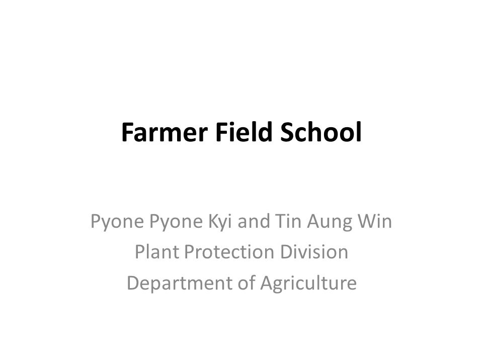 Farmer Field School Pyone Pyone Kyi and Tin Aung Win Plant Protection Division Department of Agriculture