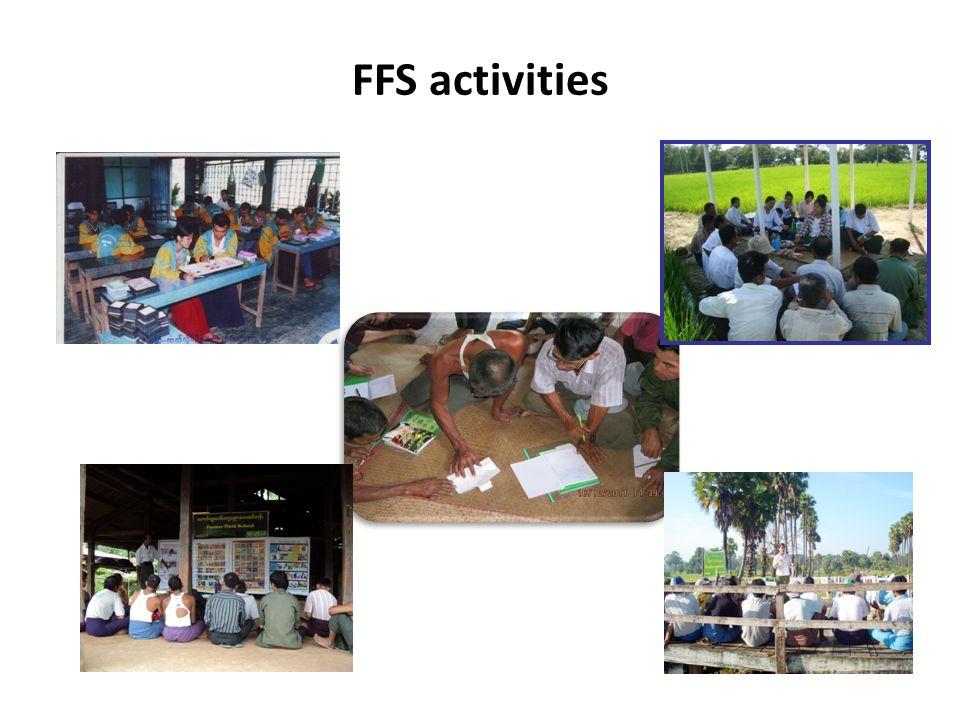 FFS activities