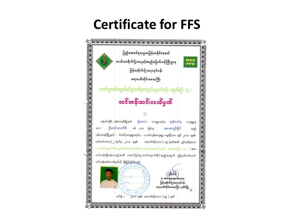 Certificate for FFS