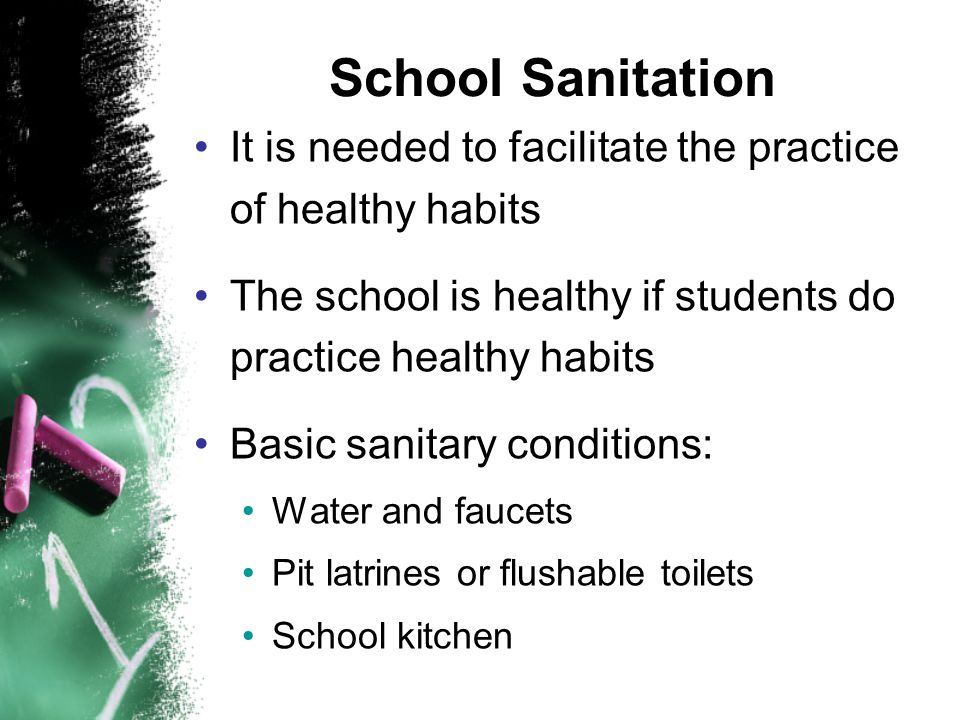 School Sanitation It is needed to facilitate the practice of healthy habits The school is healthy if students do practice healthy habits Basic sanitary conditions: Water and faucets Pit latrines or flushable toilets School kitchen