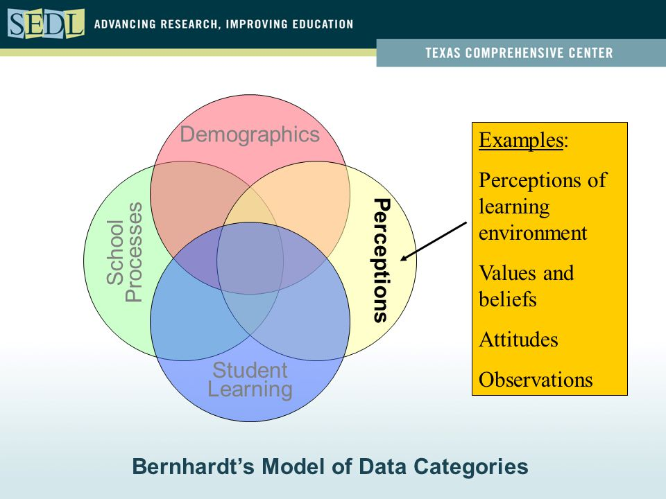 Student Learning Demographics Perceptions School Processes Examples: Perceptions of learning environment Values and beliefs Attitudes Observations Ber