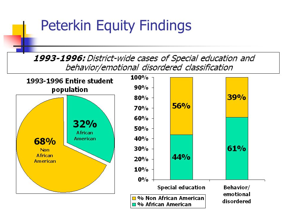 Peterkin Equity Findings 1993-1996: District-wide cases of Special education and behavior/emotional disordered classification