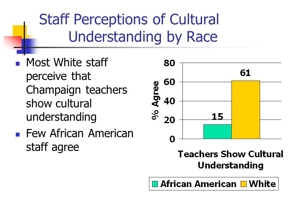 Staff Perceptions of Cultural Understanding by Race Most White staff perceive that Champaign teachers show cultural understanding Few African American staff agree