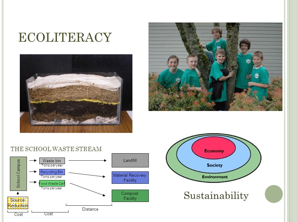 Sustainability ECOLITERACY THE SCHOOL WASTE STREAM School Campus Source Reduction Landfill Material Recovery Facility Compost Facility Waste bin Recyc