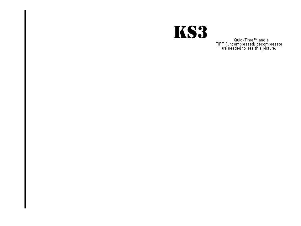 KS3 IMPACT! ENERGISING THE STRATEGY : PROMOTING A WHOLE-SCHOOL IMPACT www.geoffbarton.co.uk