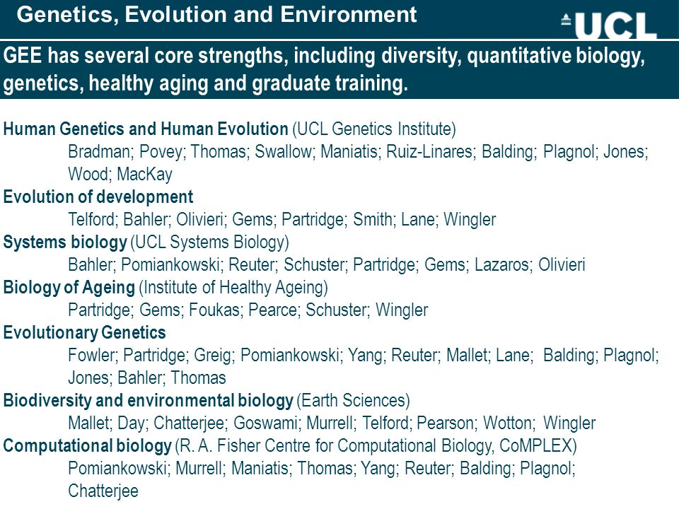 Genetics, Evolution and Environment GEE has several core strengths, including diversity, quantitative biology, genetics, healthy aging and graduate training.