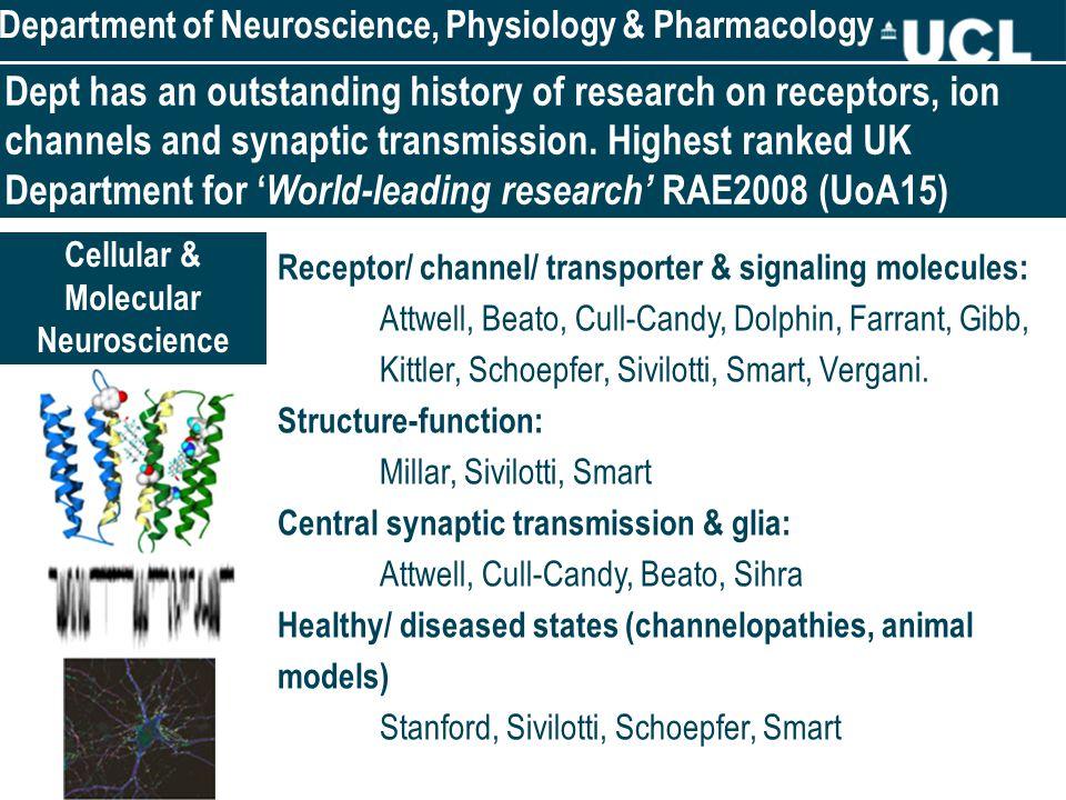 Receptor/ channel/ transporter & signaling molecules: Attwell, Beato, Cull-Candy, Dolphin, Farrant, Gibb, Kittler, Schoepfer, Sivilotti, Smart, Vergani.