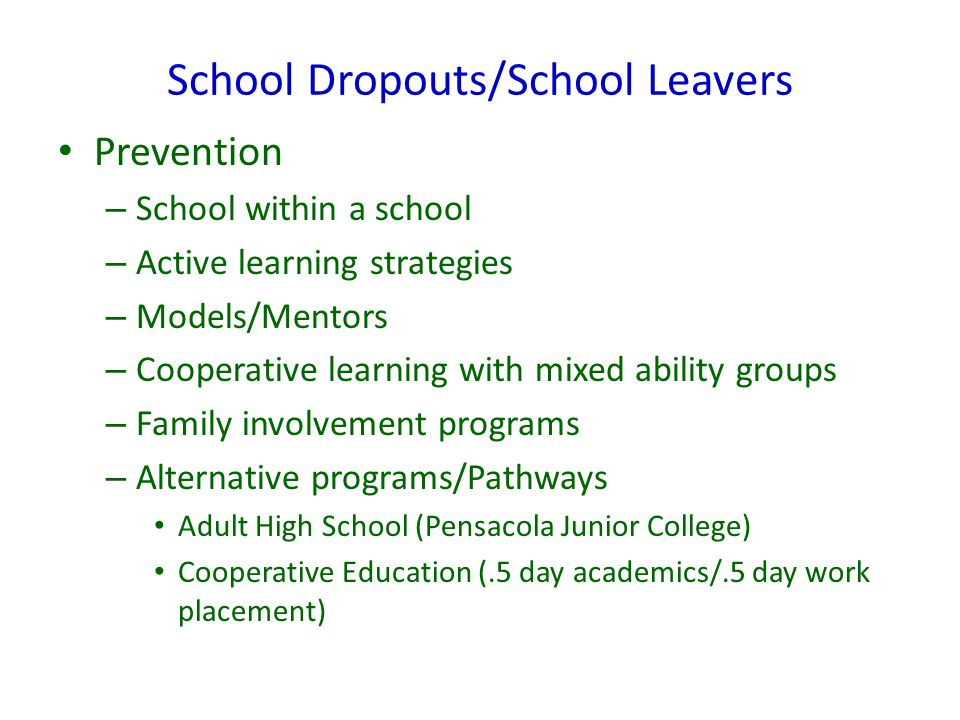 School Dropouts/School Leavers Prevention – School within a school – Active learning strategies – Models/Mentors – Cooperative learning with mixed abi