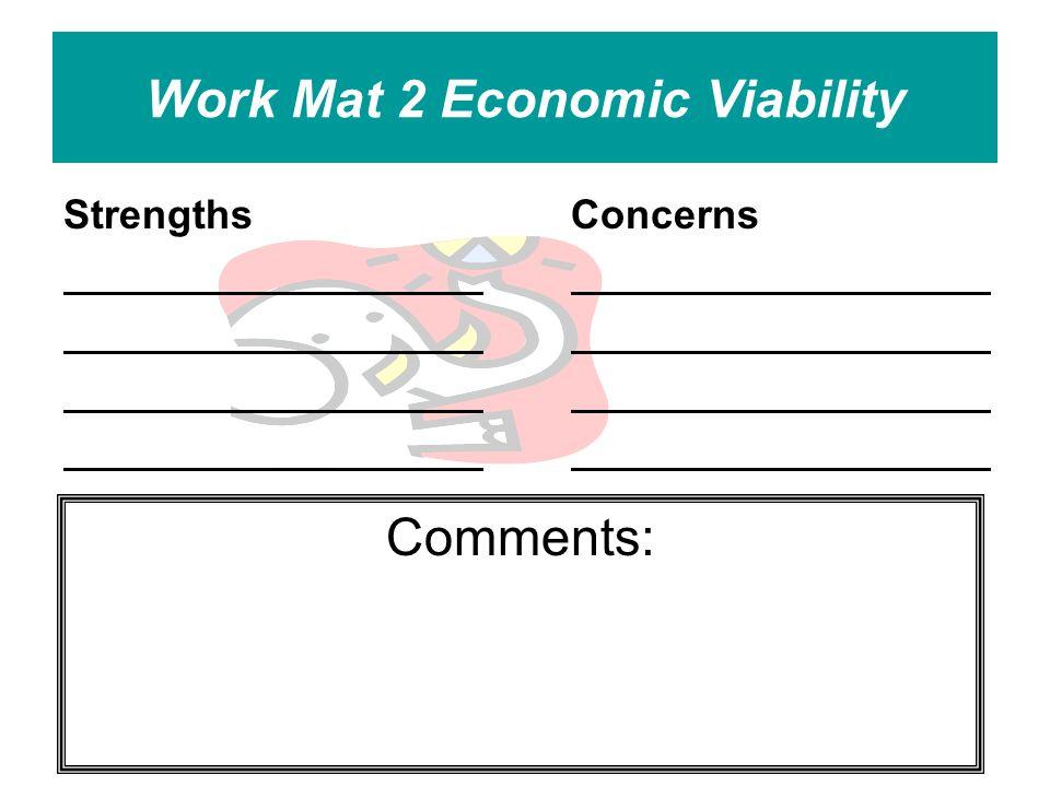 Work Mat 2 Economic Viability StrengthsConcerns Comments: