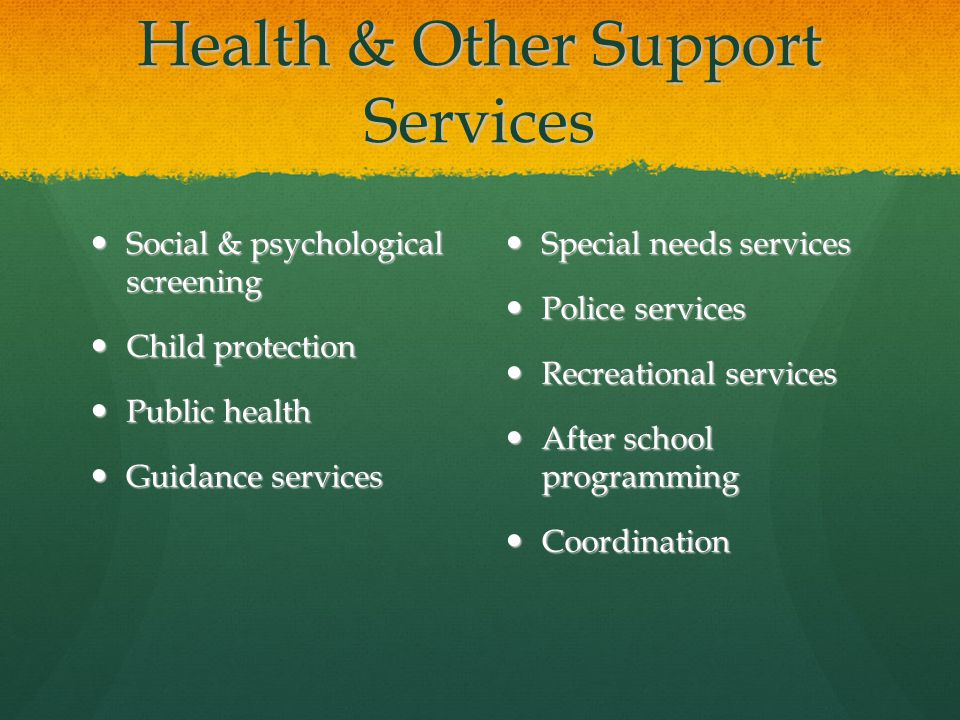 Health & Other Support Services Social & psychological screening Social & psychological screening Child protection Child protection Public health Public health Guidance services Guidance services Special needs services Special needs services Police services Police services Recreational services Recreational services After school programming After school programming Coordination Coordination