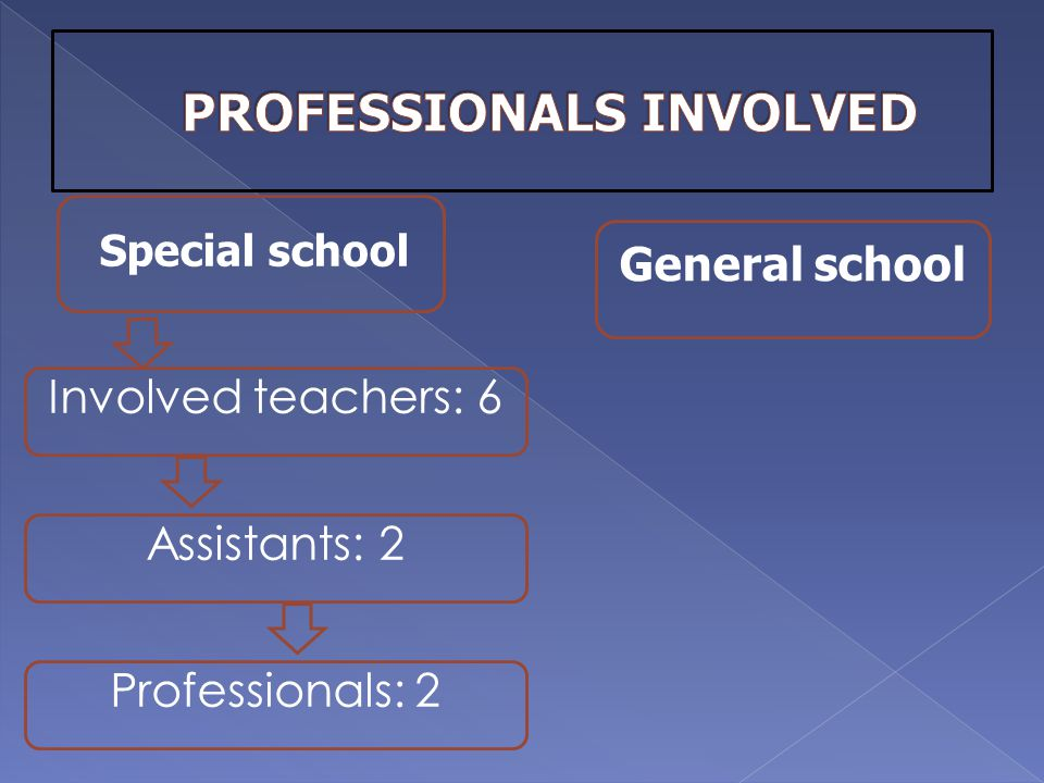 Special school Involved teachers: 6 General school Assistants: 2 Professionals: 2