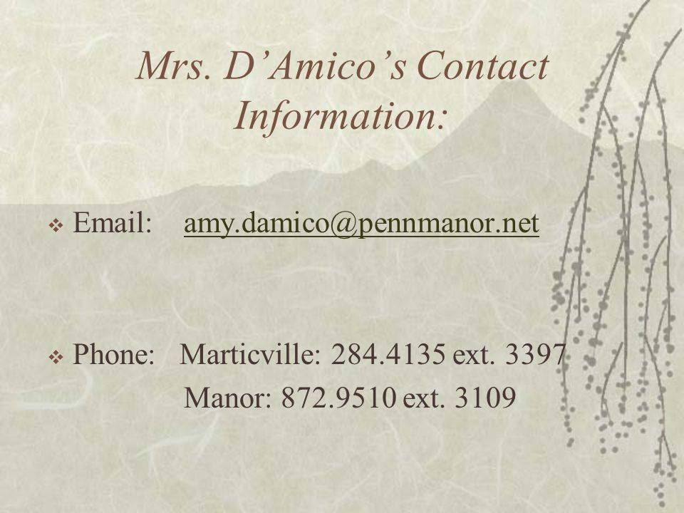Mrs. D'Amico's Contact Information:  Email: amy.damico@pennmanor.netamy.damico@pennmanor.net  Phone: Marticville: 284.4135 ext. 3397 Manor: 872.9510