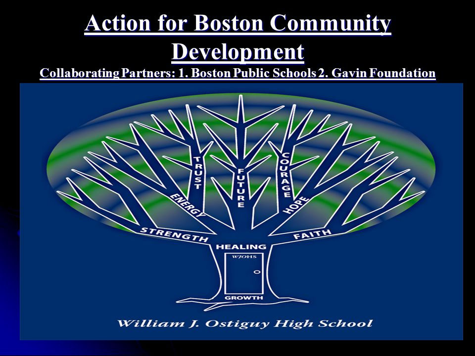Action for Boston Community Development Collaborating Partners: 1.