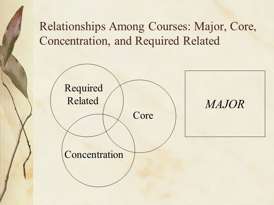 Relationships Among Courses: Major, Core, Concentration, and Required Related MAJOR Required Related Core Concentration