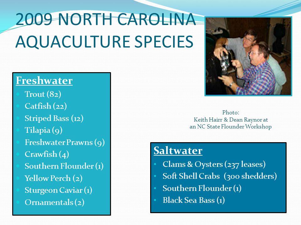 Freshwater Trout (82) Catfish (22) Striped Bass (12) Tilapia (9) Freshwater Prawns (9) Crawfish (4) Southern Flounder (1) Yellow Perch (2) Sturgeon Ca