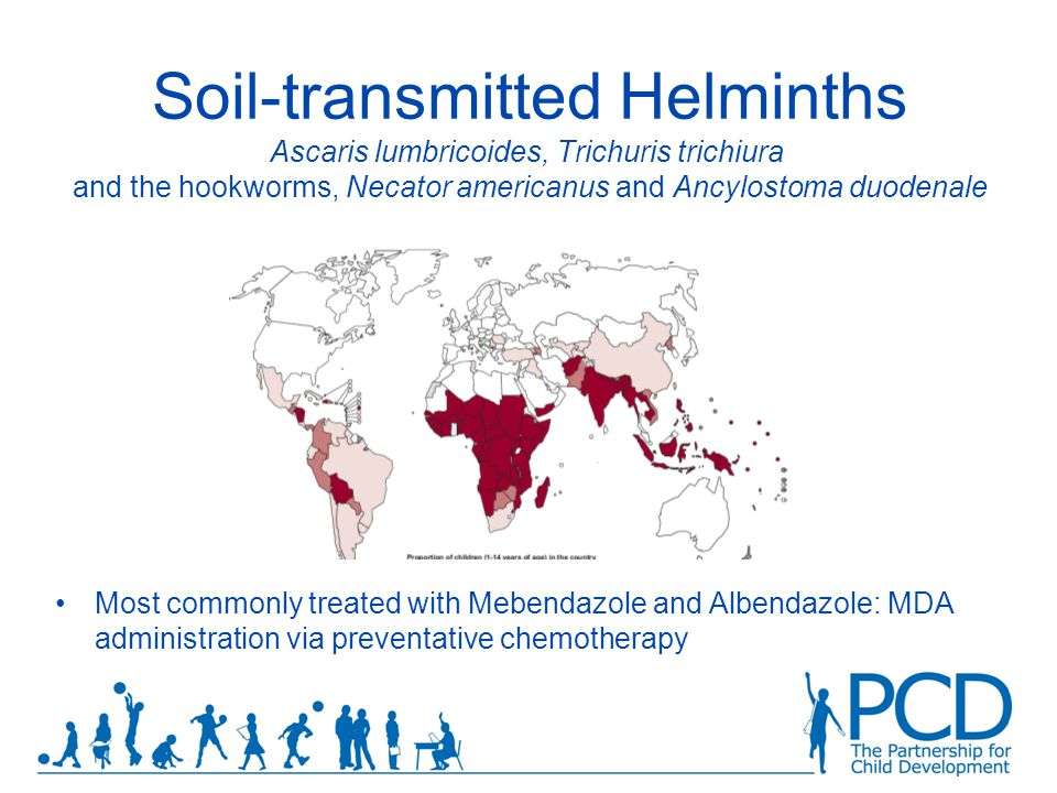 Soil-transmitted Helminths Ascaris lumbricoides, Trichuris trichiura and the hookworms, Necator americanus and Ancylostoma duodenale Most commonly treated with Mebendazole and Albendazole: MDA administration via preventative chemotherapy