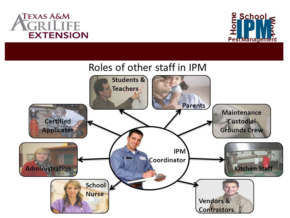 Roles of other staff in IPM Certified Applicator Administration Maintenance Custodial Grounds Crew Kitchen Staff IPM Coordinator School Nurse Parents Students & Teachers Vendors & Contractors Home Work IPM School Pest Management