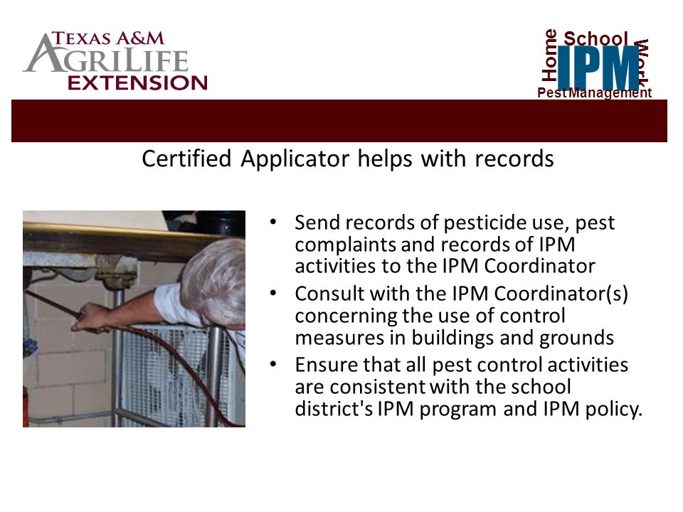 Certified Applicator helps with records Send records of pesticide use, pest complaints and records of IPM activities to the IPM Coordinator Consult with the IPM Coordinator(s) concerning the use of control measures in buildings and grounds Ensure that all pest control activities are consistent with the school district s IPM program and IPM policy.