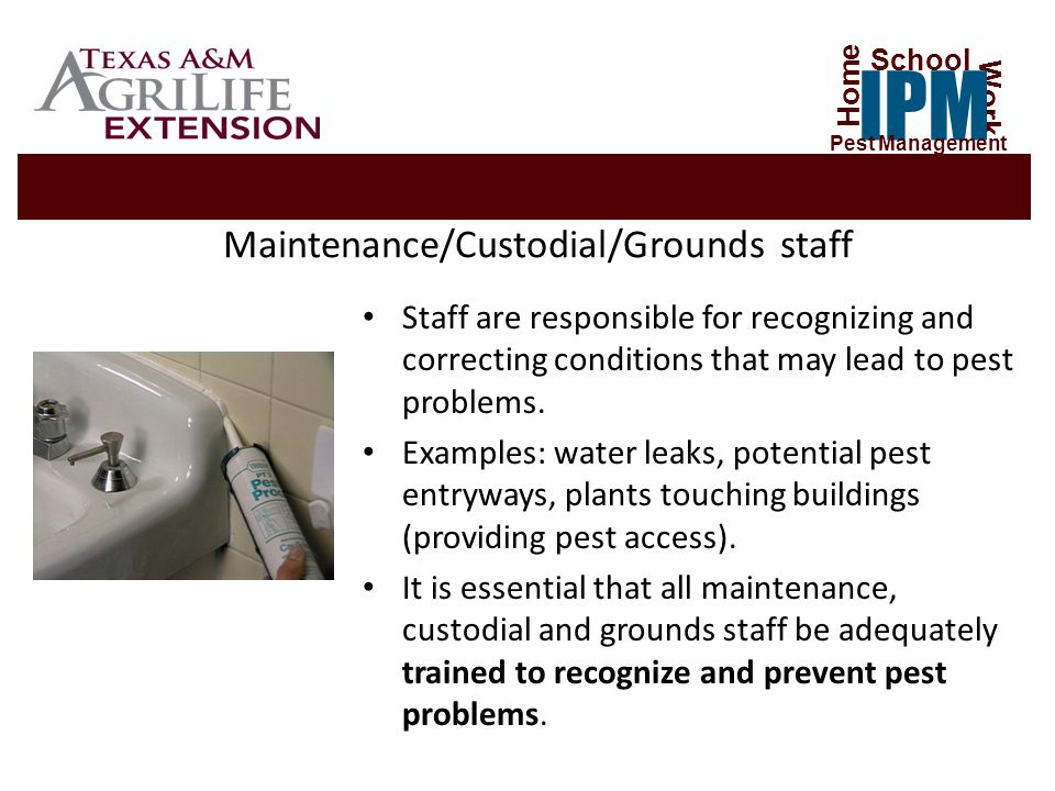 Maintenance/Custodial/Grounds staff Staff are responsible for recognizing and correcting conditions that may lead to pest problems.