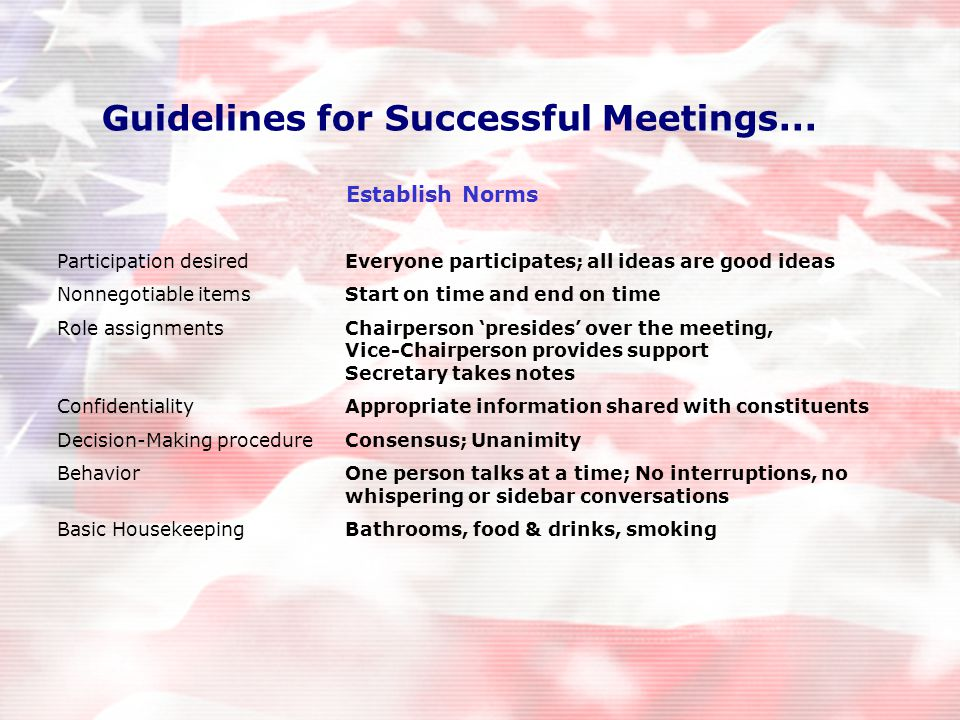 Guidelines for Successful Meetings...