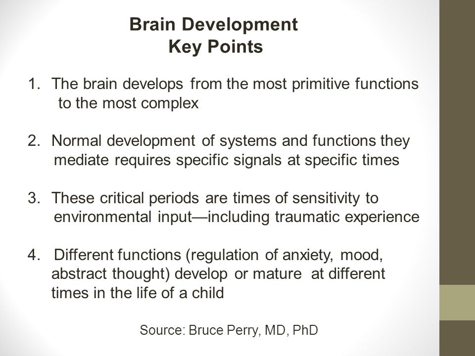 Brain Development Key Points 1.The brain develops from the most primitive functions to the most complex 2.Normal development of systems and functions they mediate requires specific signals at specific times 3.These critical periods are times of sensitivity to environmental input—including traumatic experience 4.