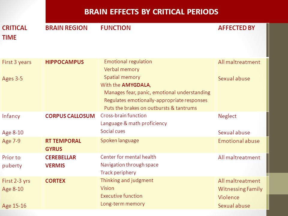 BRAIN EFFECTS BY CRITICAL PERIODS CRITICAL TIME BRAIN REGIONFUNCTIONAFFECTED BY First 3 years Ages 3-5 HIPPOCAMPUS Emotional regulation Verbal memory Spatial memory With the AMYGDALA, Manages fear, panic, emotional understanding Regulates emotionally-appropriate responses Puts the brakes on outbursts & tantrums All maltreatment Sexual abuse Infancy Age 8-10 CORPUS CALLOSUM Cross-brain function Language & math proficiency Social cues Neglect Sexual abuse Age 7-9 RT TEMPORAL GYRUS Spoken language Emotional abuse Prior to puberty CEREBELLAR VERMIS Center for mental health Navigation through space Track periphery All maltreatment First 2-3 yrs Age 8-10 Age 15-16 CORTEX Thinking and judgment Vision Executive function Long-term memory All maltreatment Witnessing Family Violence Sexual abuse