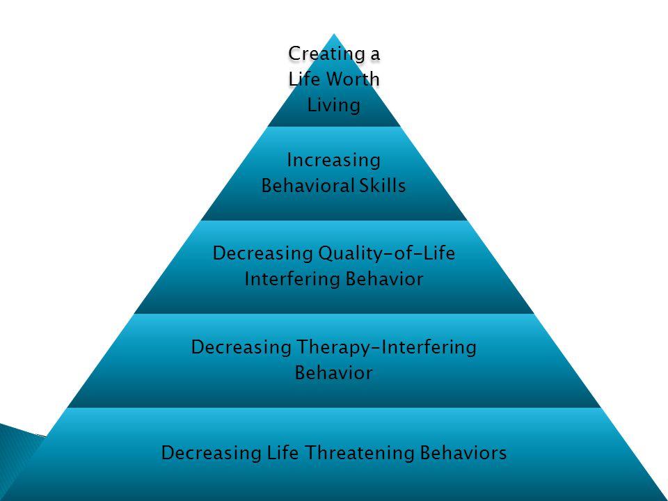 Creating a Life Worth Living Increasing Behavioral Skills Decreasing Quality-of-Life Interfering Behavior Decreasing Therapy-Interfering Behavior Decreasing Life Threatening Behaviors