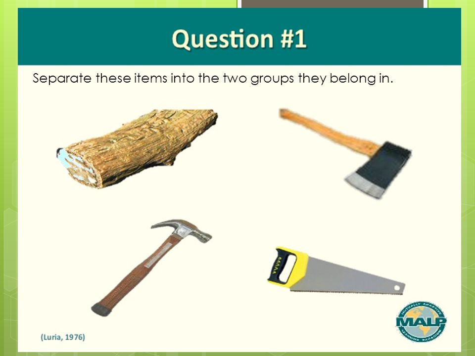Separate these items into the two groups they belong in.