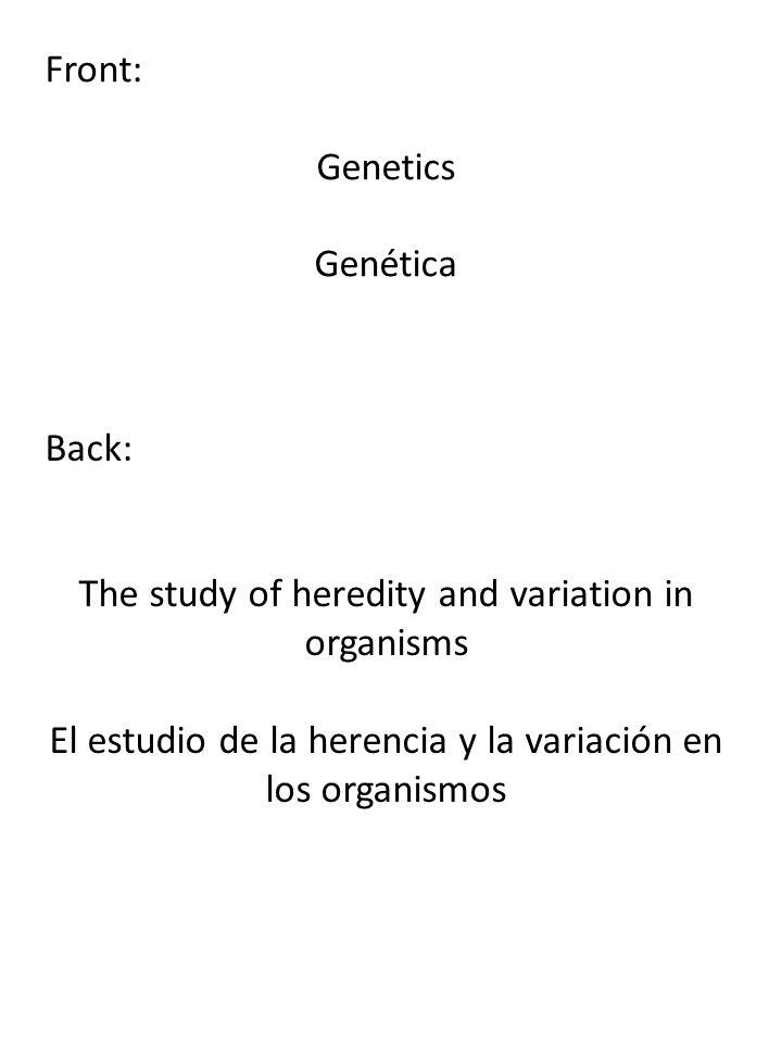 Front: Genetics Genética Back: The study of heredity and variation in organisms El estudio de la herencia y la variación en los organismos